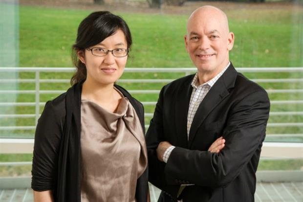 Doctoral researcher Dongying Li with head of landscape William Sullivan. Image: L. Brian Stauffer