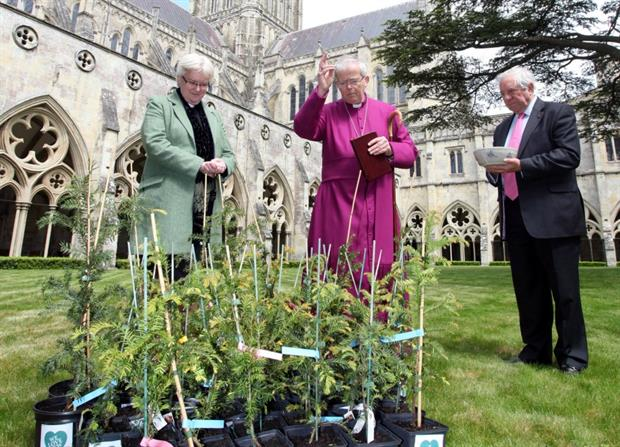 The Bishop is seen here with the Dean, the Very Reverend June Osborne, who planted a yew in the cathedral cloisters and Sir Hayden Phillips, Chair of the Fabric Committee and a Lay Canon of Salisbury Cathedral.