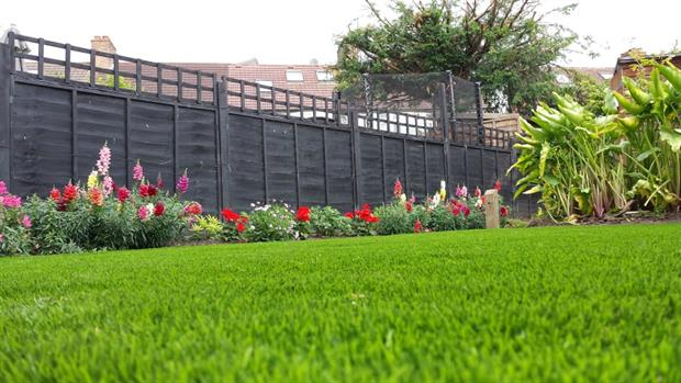 TigerTurf's Aspire synthetic grass