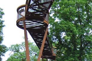 Kew walkway gives access to tree canopy - photo: HW
