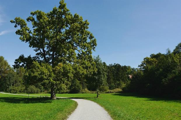 Green Guarantee to protect open space. Image: Pixabay
