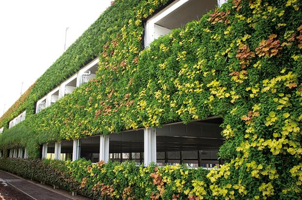 The living wall on the National Grid's Warwick HQ carpark