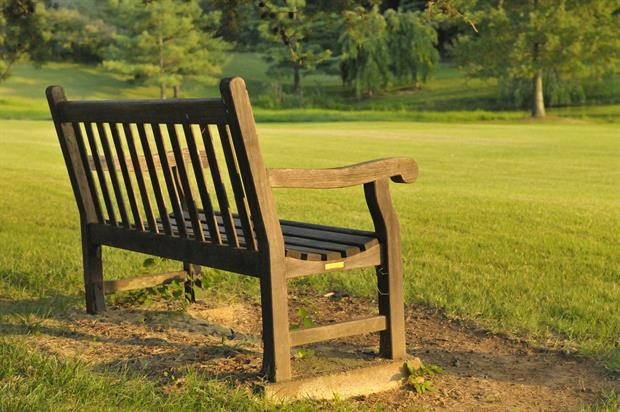 Park managers - what's the view from where you sit? Image: Pixabay