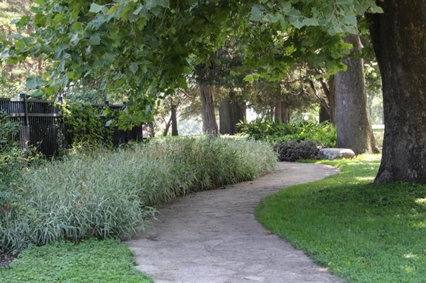 Green infrastructure. Image: MorgueFile