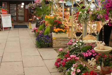 Percy Thrower garden centre