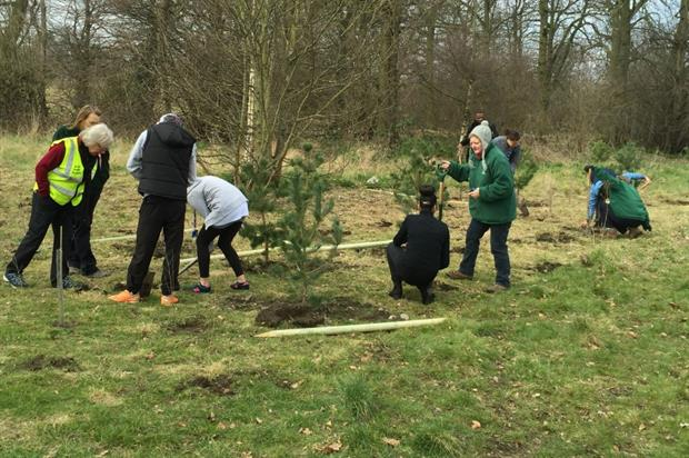 Volunteers planting at Perry Hall Park. Image: Supplied