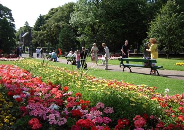 Beds in Burnley's Queen's Park planted with perennials for local Rethinking Parks project. Image: Simon Goff