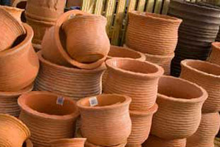 Garden centre - pot display