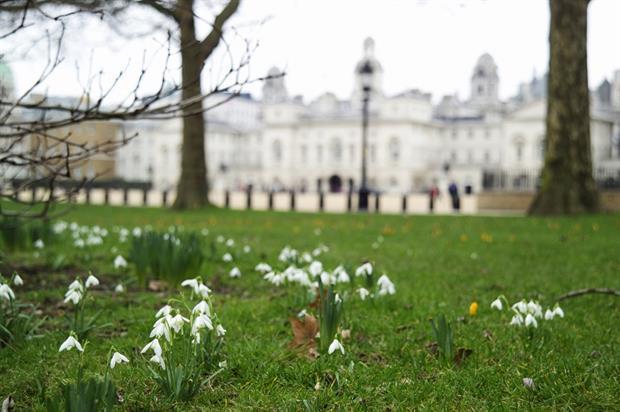 St James' Park. Image: The Royal Parks / Indusfoto Ltd