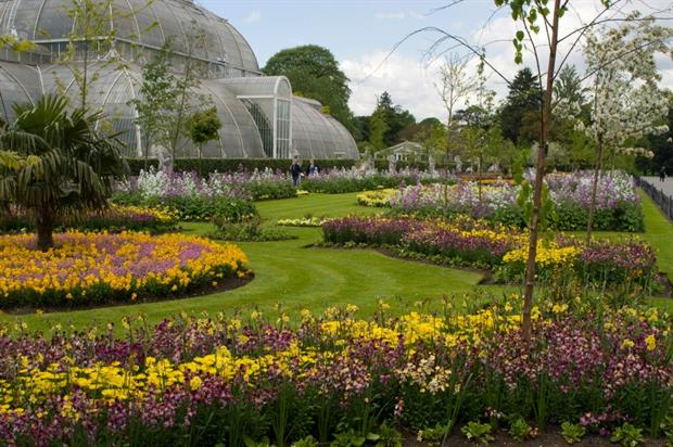 The Palm House parterre at Kew. Image: RBG Kew