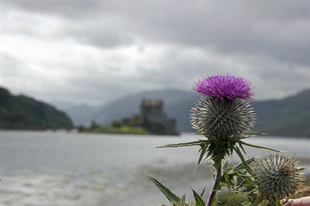 National Trust for Scotland to restructure. Image: Pixabay