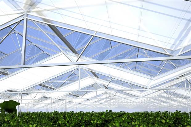 Image: Wageningen UR Glastuinbouw