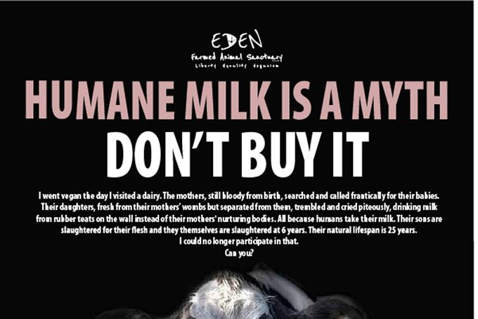 Vegan ad criticising 'inhumane' dairy practices escapes ban