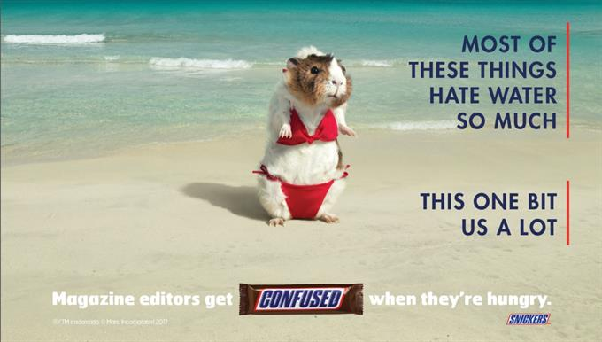 Snickers upstages Kate Upton on Sports Illustrated back cover
