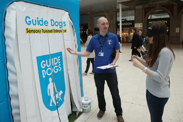 """Guide Dogs: runs """"guides for life"""" campaign"""