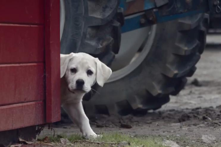 Budweiser: 'lost dog' was the most-shared ad across social media during Super Bowl XLIX