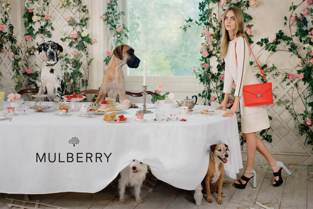 Mulberry failed to solve the new conundrum of accessibility and luxury