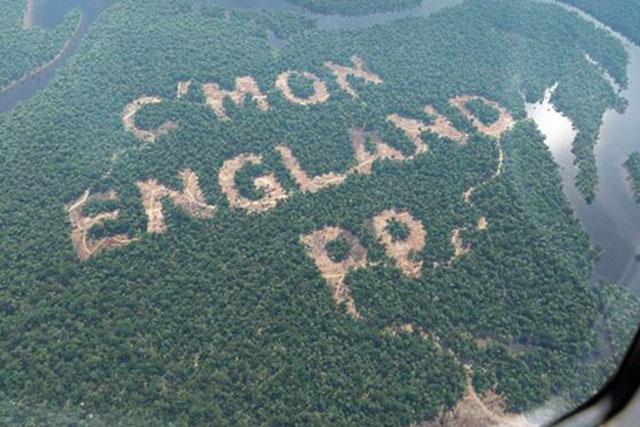 Paddy Power's World Cup rainforest stunt