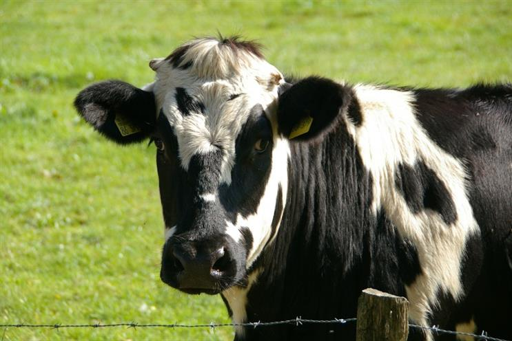 Dairy farms: Asda agrees a fairer deal