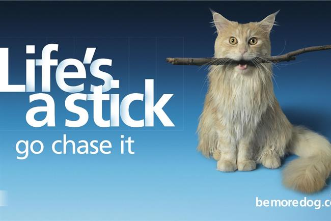O2's best ads as 'Be more dog' campaign ends