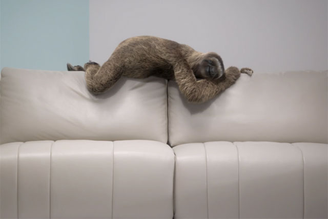 Sofaworks: 'sniff' by TBWA\Manchester
