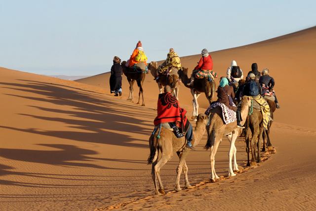TUI Travel: combines adventure brands with Intrepid Travel