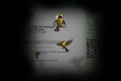 One spell involves sending a flock of birds