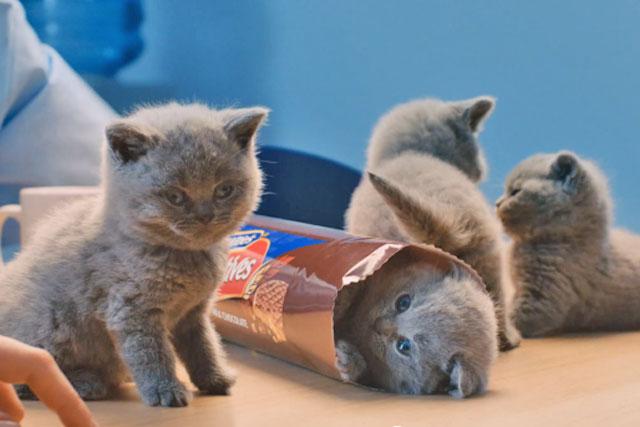 McVitie's Chocolate Digestives: unveils latest ad