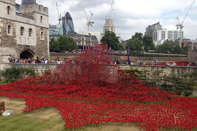 Poppies: picture was snapped by tweeter @tudorgurl