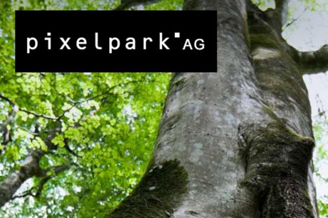 Pixelpark: Publicis bids for German company