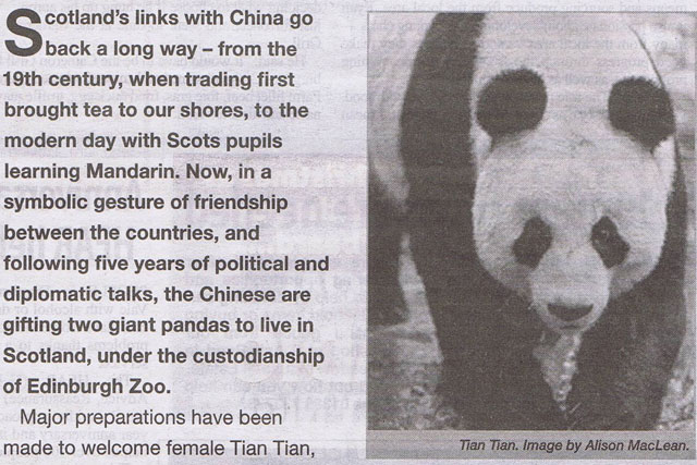 Scottish Government: panda ad is rapped by the ASA
