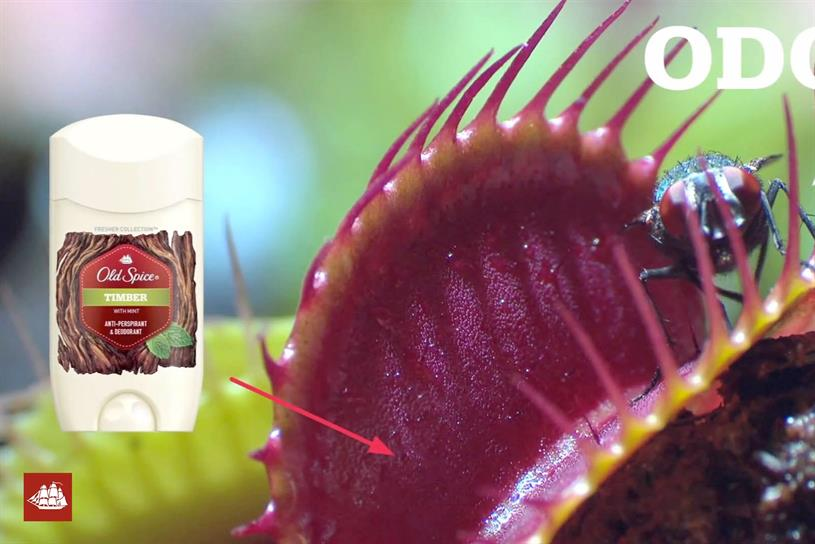 Old Spice 'Smell as Great as Nature Is' by Wieden + Kennedy Portland.
