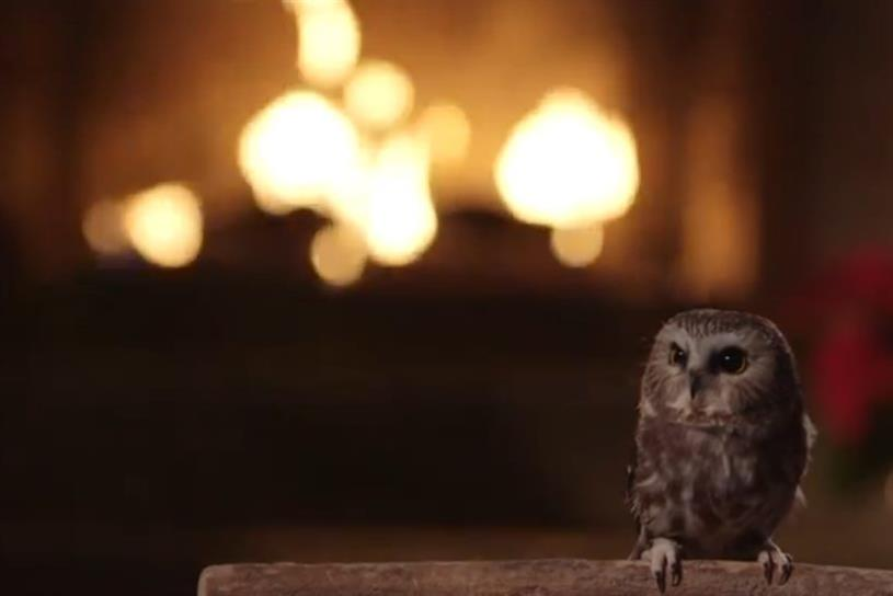 Hootsuite's holiday owl video
