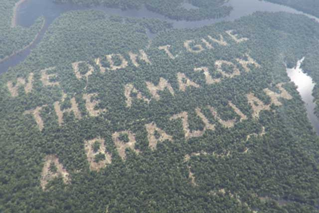 Taking risks: Paddy Power's recent deforestation stunt