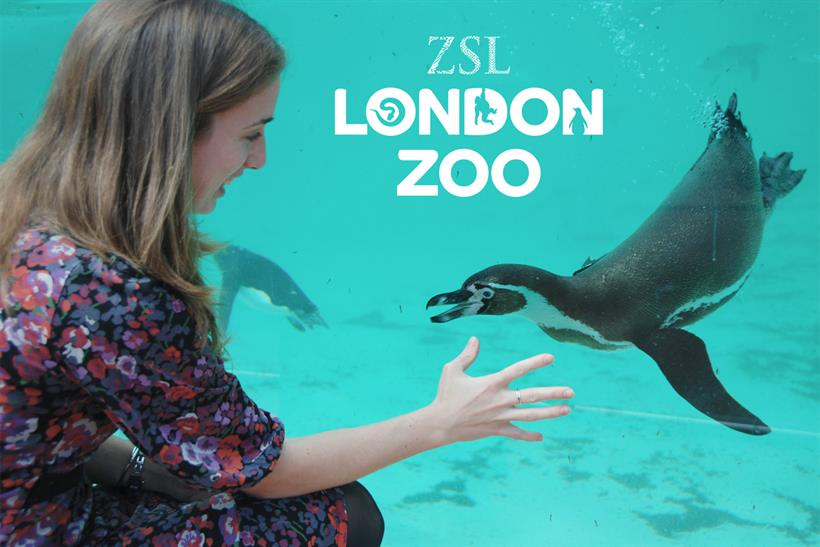 ZSL: Arena will oversee media for the London Zoo and Whipsnade Zoo