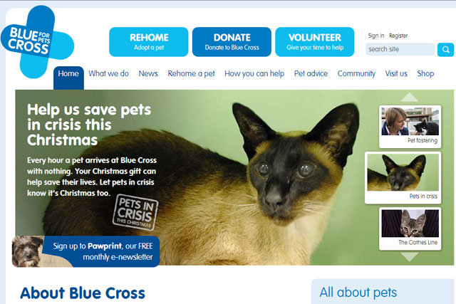 Blue Cross: charity hires M&C Saatchi Group to handle its media business