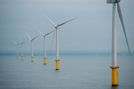 All 116 turbines are now in place (pic credit: Darren Cool)