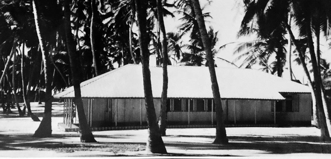 A Puutalo house in Australia sits among a group of tall palm trees in the early 1950s.
