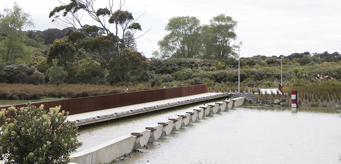 Vaughans Stream Corridor Wetlands + Bridge - LandLAB