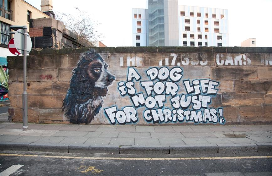 Dr Zadok's street art collaboration with Dogs Trust