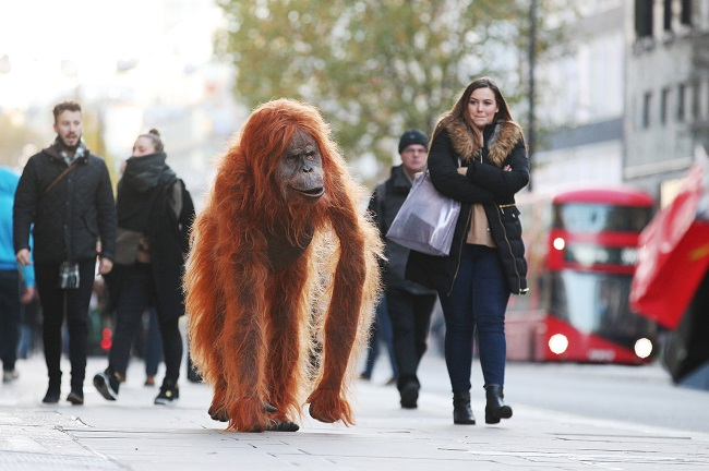 Iceland deploys animatronic orangutan as part of anti-palm oil campaign
