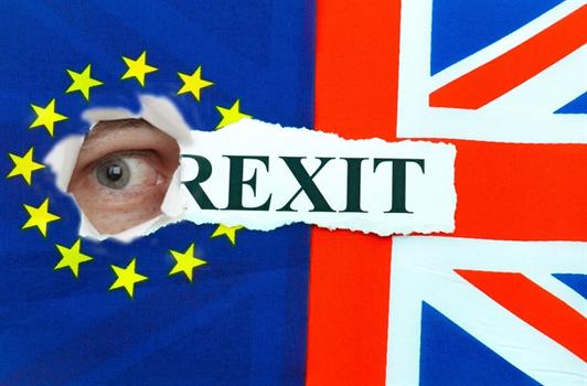 UK's official Brexit documentation app is porous