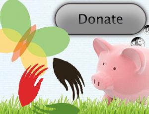 Fundraising websites: Some fear lack of regulation
