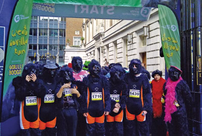 Great Gorilla Run: Publicity for charity