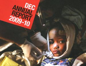 DEC annual report