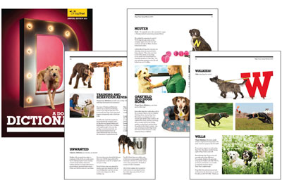 Dogs Trust Dictionary