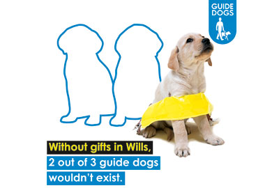 A Guide Dogs advert