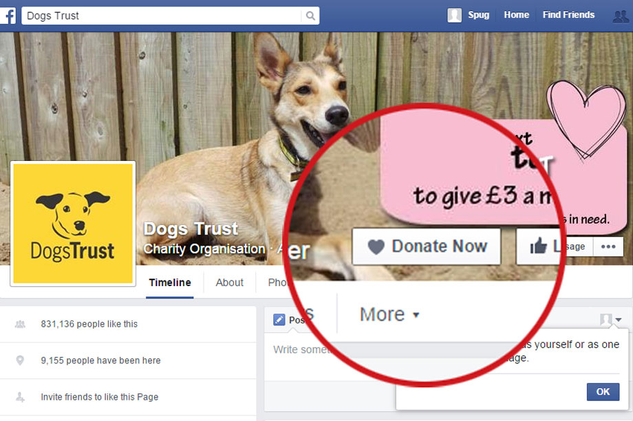 Dogs Trust among those to put up 'donate now' buttons at once