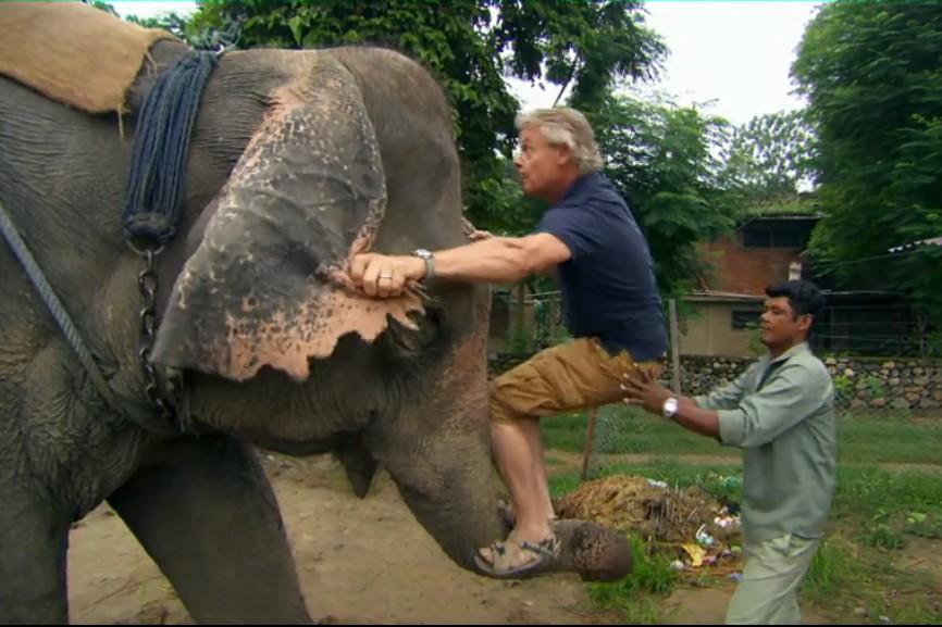 Bad trunk call: Clunes climbs aboard the pachyderm