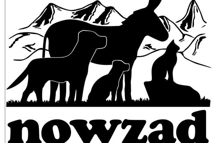 Nowzad logo